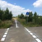 Fahrbahnmarkierungen